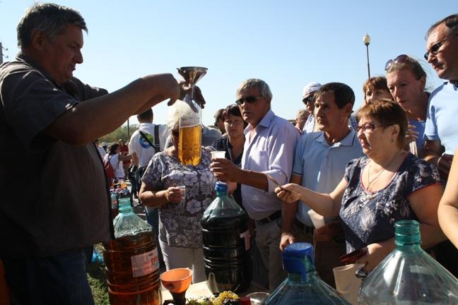 на празднике Донская лоза-2015 - дегустация