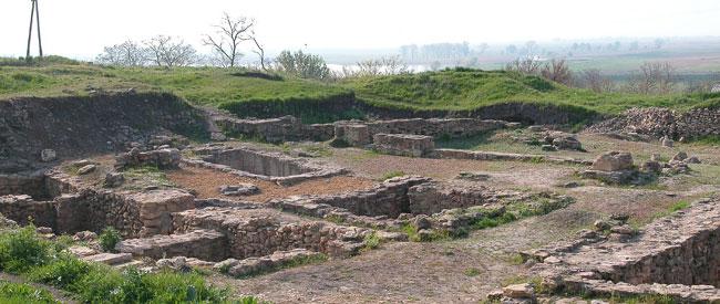 раскопы Танаиса