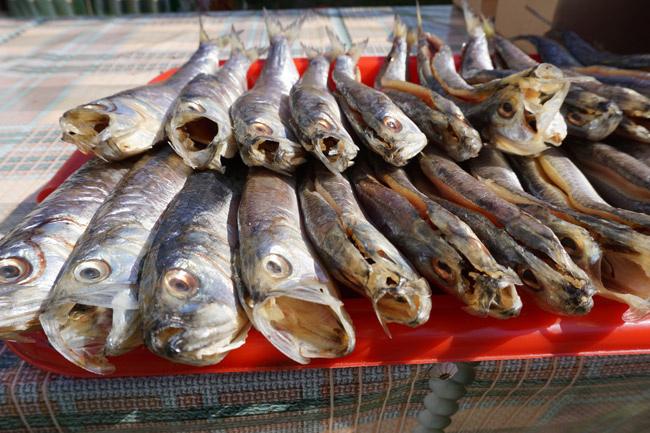 важная-рыба