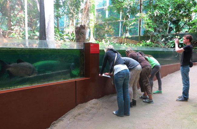 дети-у-аквариума-музей-наук
