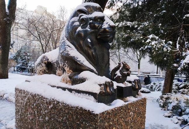 Сердитый лев зимой