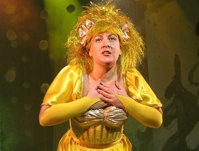 Солнышко, Новогоднее представление в Ростовском Молодежном театре, фото Веры Волошиновой
