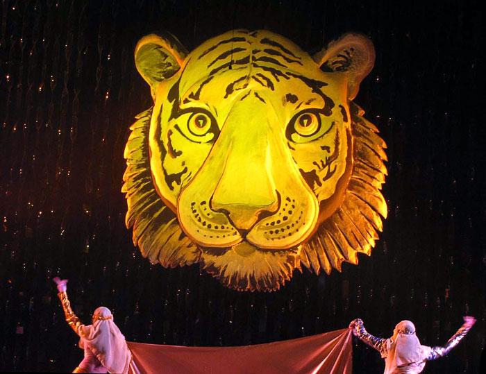 Новогоднее шоу 'Брызги шампанского - 2009' в Ростовском театре Горького, фото Веры Волошиновой
