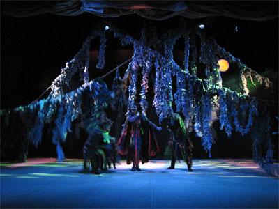 Cпектакль Новошахтинского драматического театра Аленький цветочек, фото Веры Волошиновой